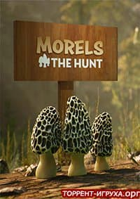 Morels The Hunt Spring