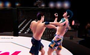Ultimate MMA